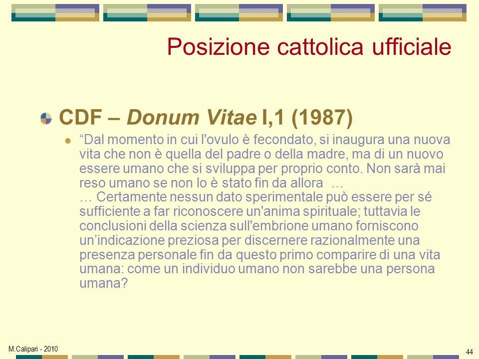 Posizione cattolica ufficiale