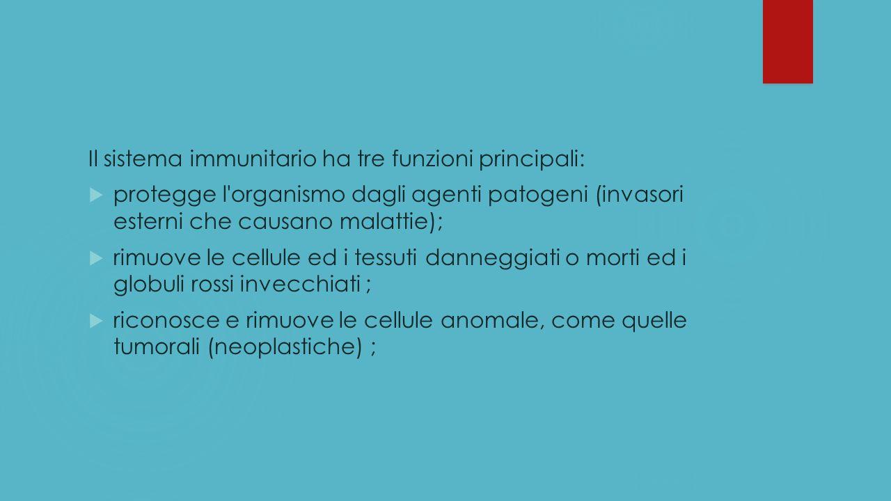 Il sistema immunitario ha tre funzioni principali: