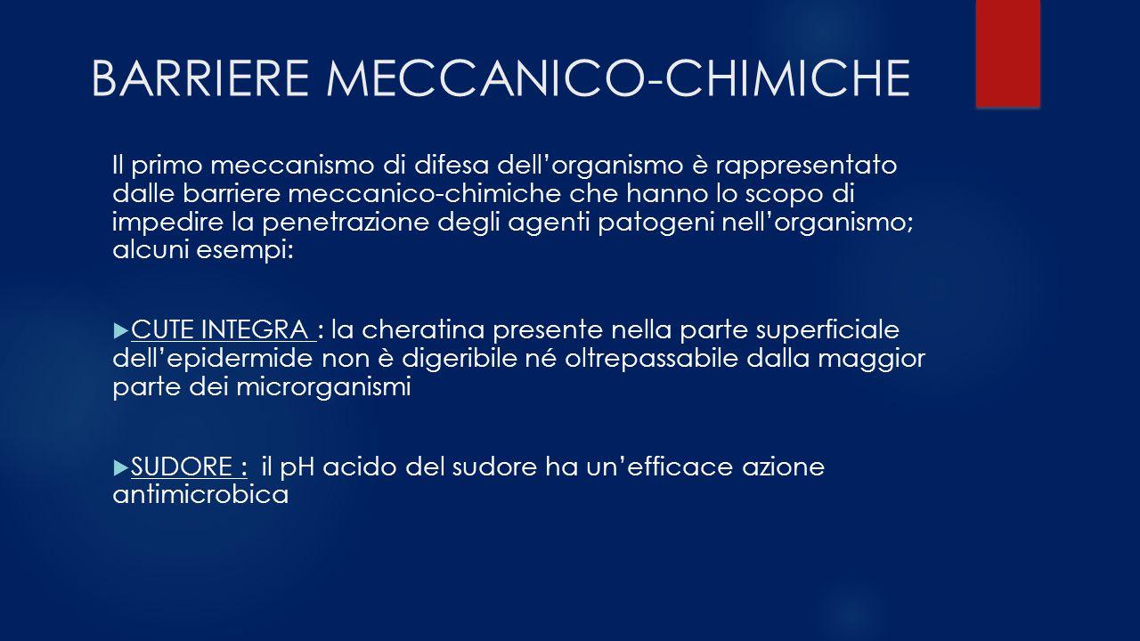 BARRIERE MECCANICO-CHIMICHE