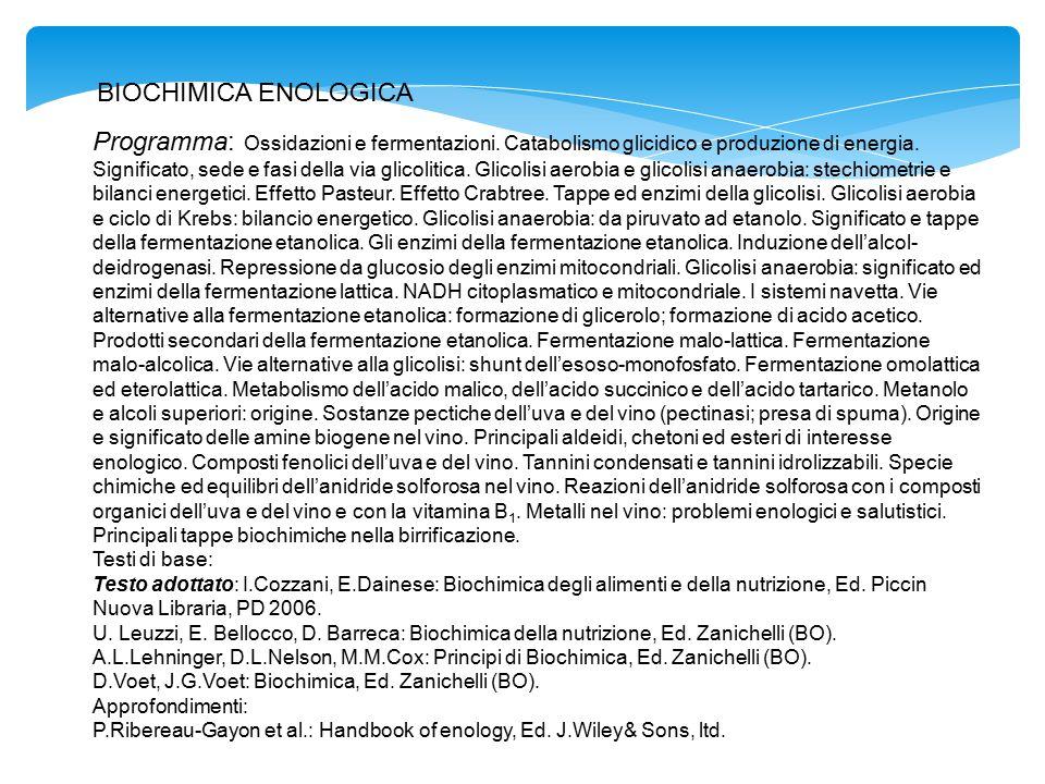 BIOCHIMICA ENOLOGICA