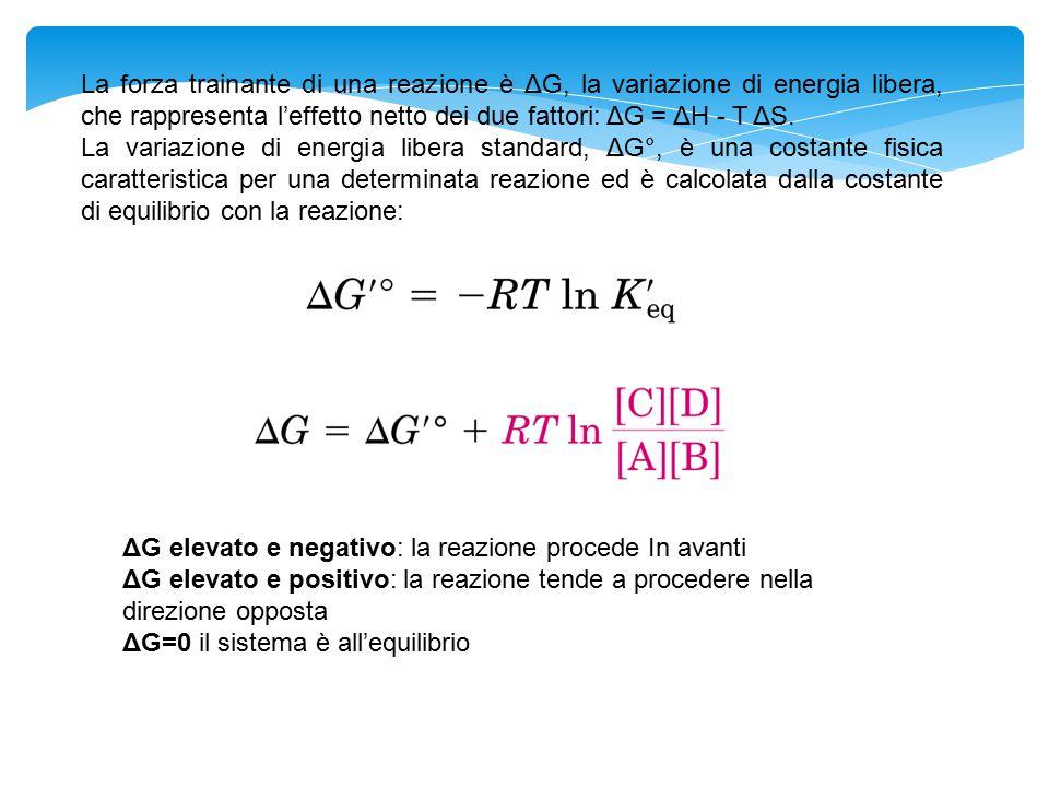 La forza trainante di una reazione è ΔG, la variazione di energia libera, che rappresenta l'effetto netto dei due fattori: ΔG = ΔH - T ΔS.