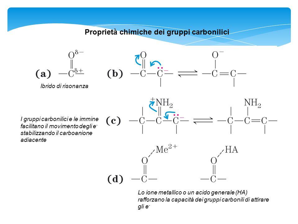 Proprietà chimiche dei gruppi carbonilici
