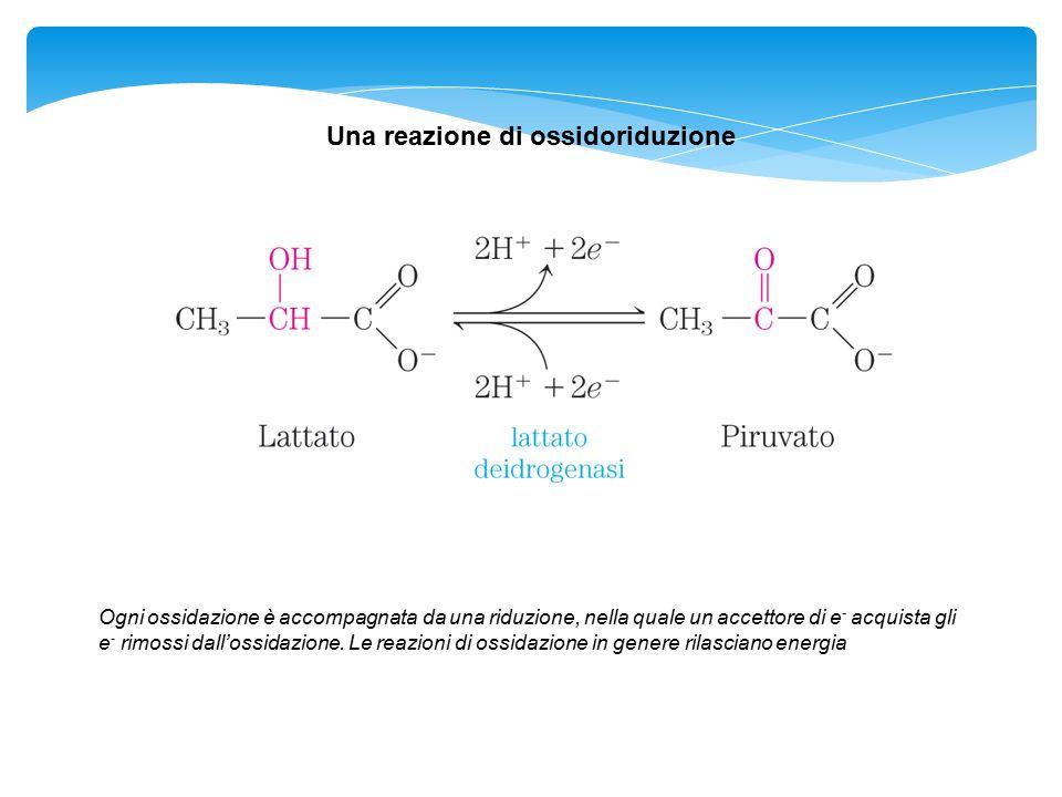 Una reazione di ossidoriduzione