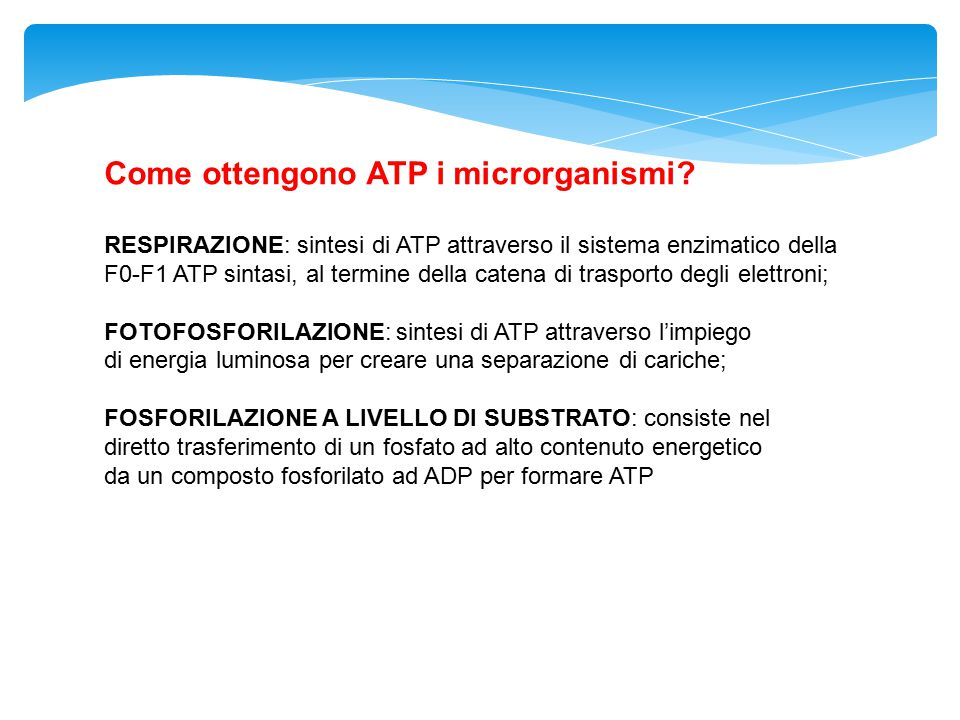 Come ottengono ATP i microrganismi