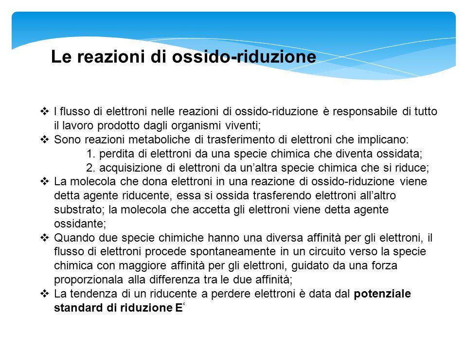 Le reazioni di ossido-riduzione