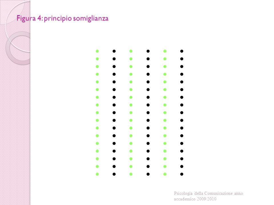 Figura 4: principio somiglianza