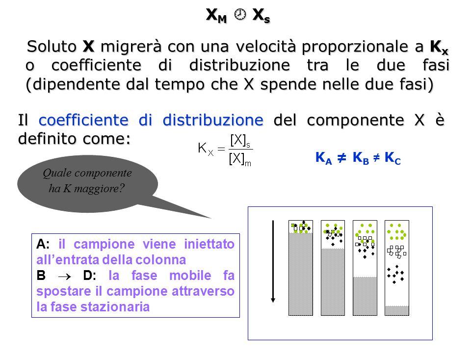 Soluto X migrerà con una velocità proporzionale a Kx