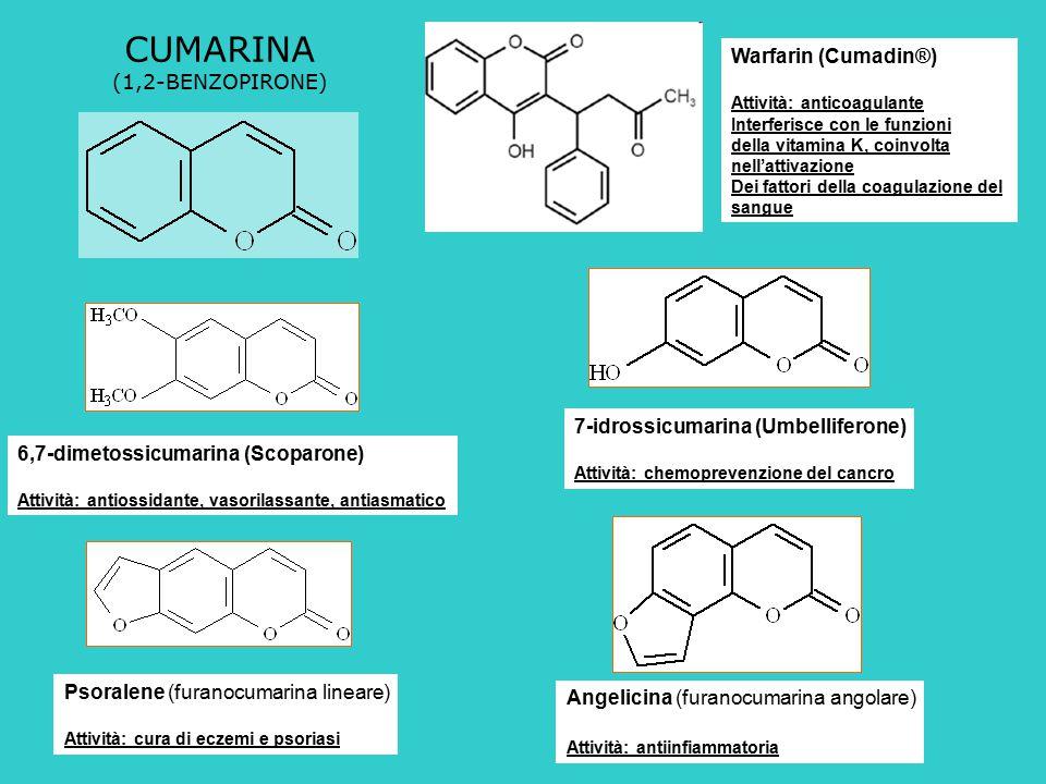 CUMARINA Warfarin (Cumadin®) (1,2-BENZOPIRONE)