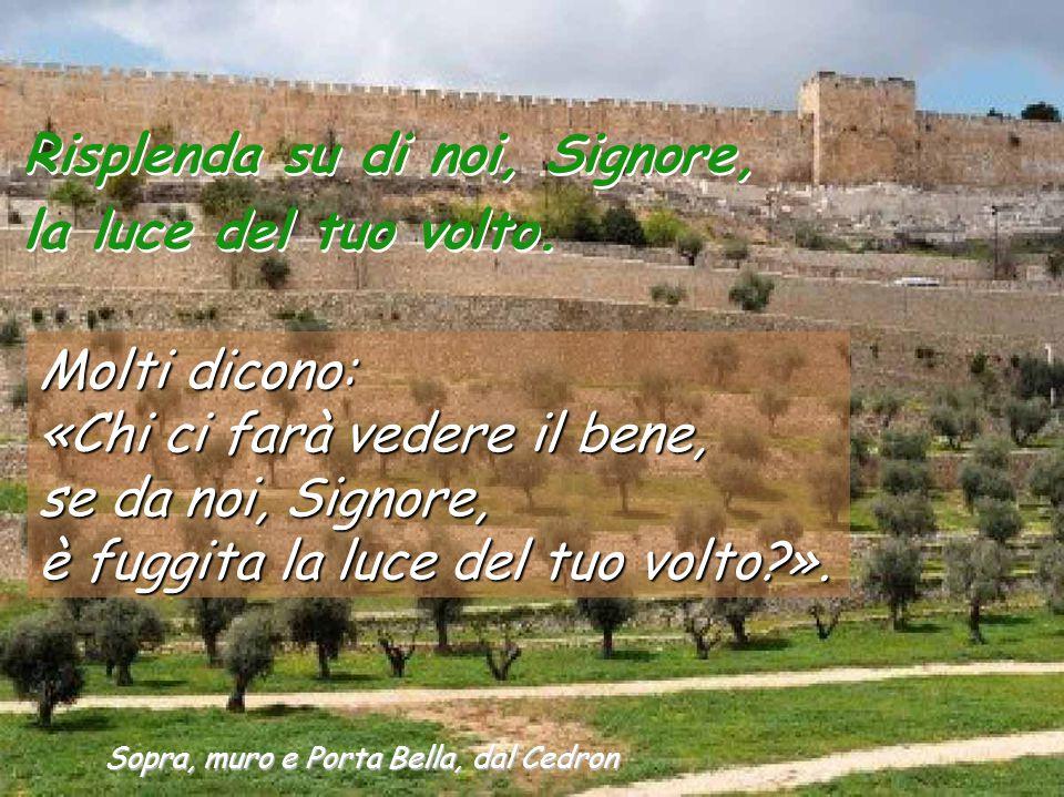 Sopra, muro e Porta Bella, dal Cedron