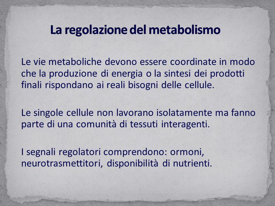 La regolazione del metabolismo