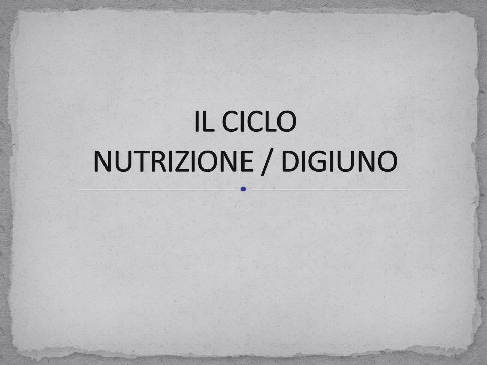 IL CICLO NUTRIZIONE / DIGIUNO