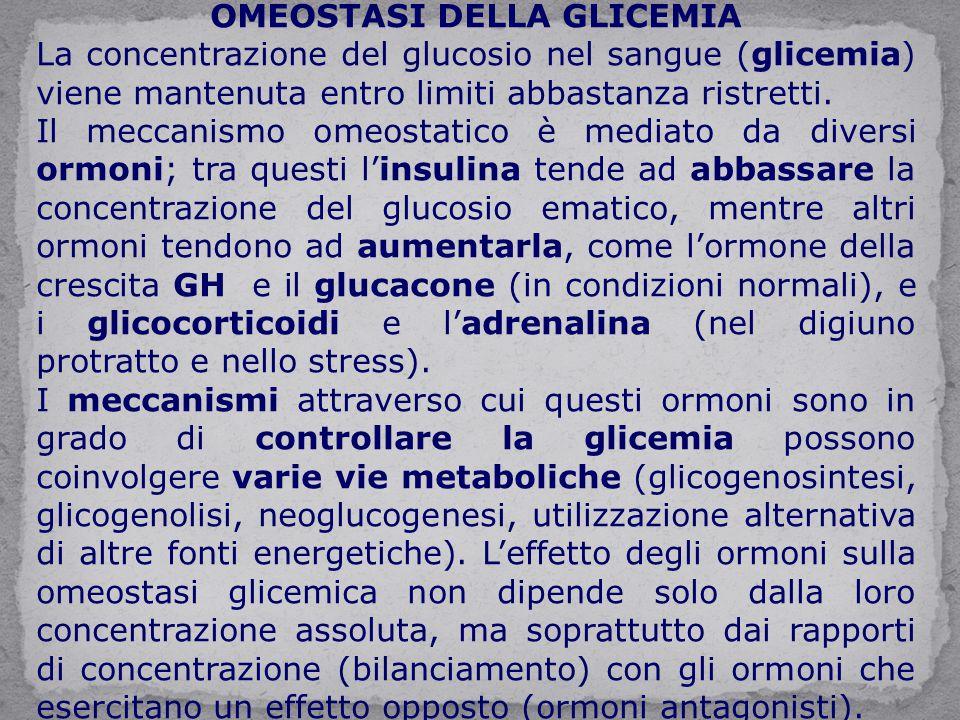 OMEOSTASI DELLA GLICEMIA