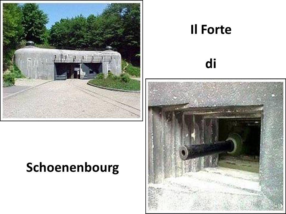 Il Forte di Schoenenbourg
