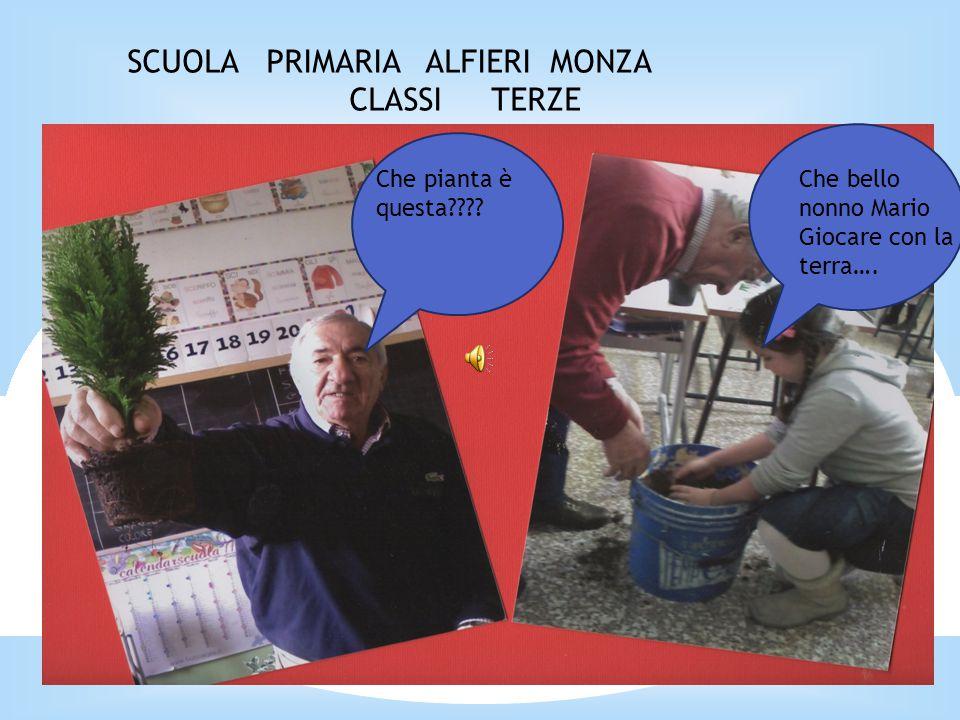 SCUOLA PRIMARIA ALFIERI MONZA CLASSI TERZE