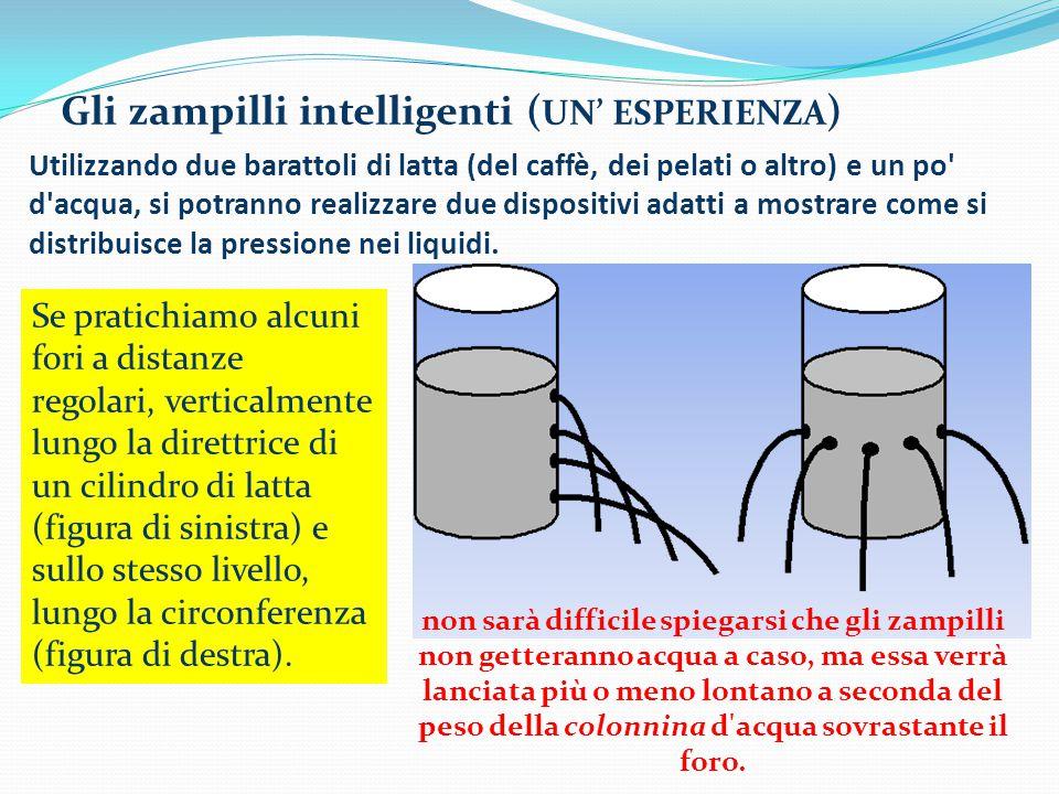 Gli zampilli intelligenti (UN' ESPERIENZA)