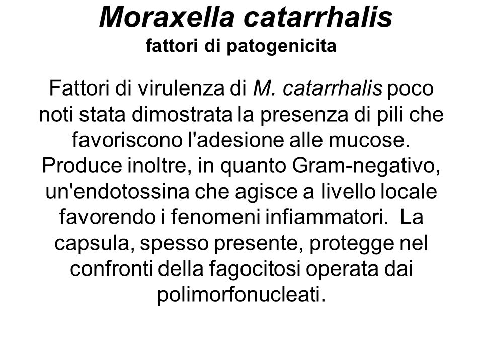 Moraxella catarrhalis fattori di patogenicita