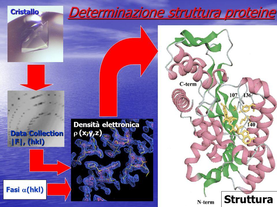 Determinazione struttura proteine