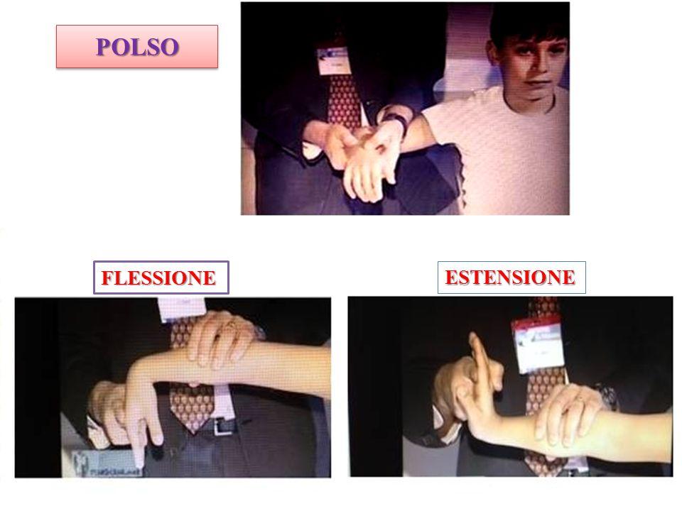 POLSO FLESSIONE ESTENSIONE
