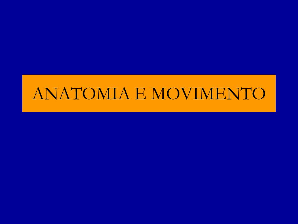 ANATOMIA E MOVIMENTO