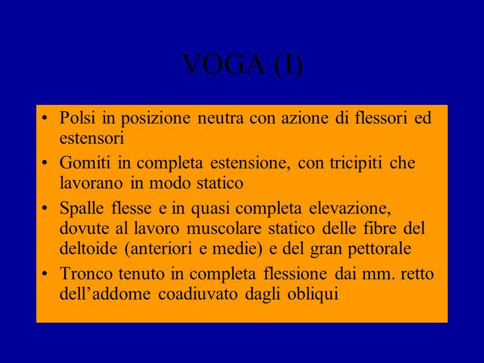 VOGA (I) Polsi in posizione neutra con azione di flessori ed estensori