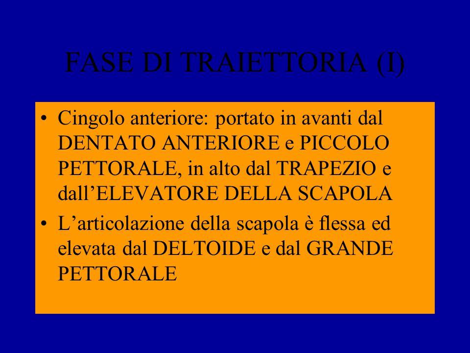 FASE DI TRAIETTORIA (I)