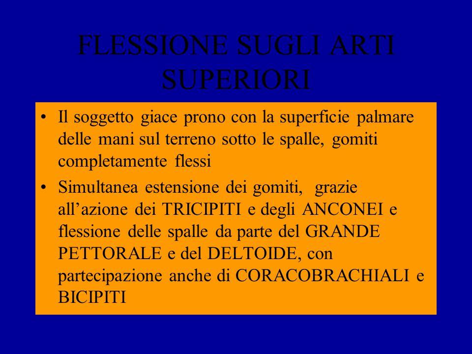 FLESSIONE SUGLI ARTI SUPERIORI