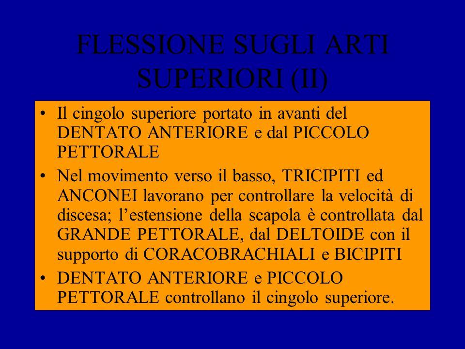 FLESSIONE SUGLI ARTI SUPERIORI (II)