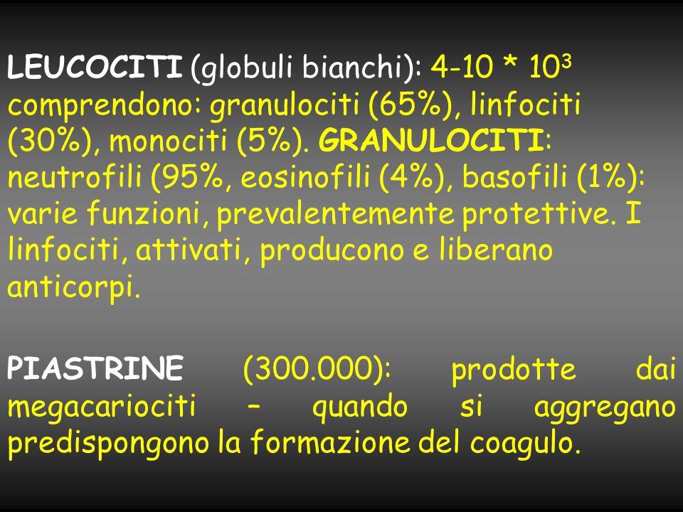 LEUCOCITI (globuli bianchi): 4-10