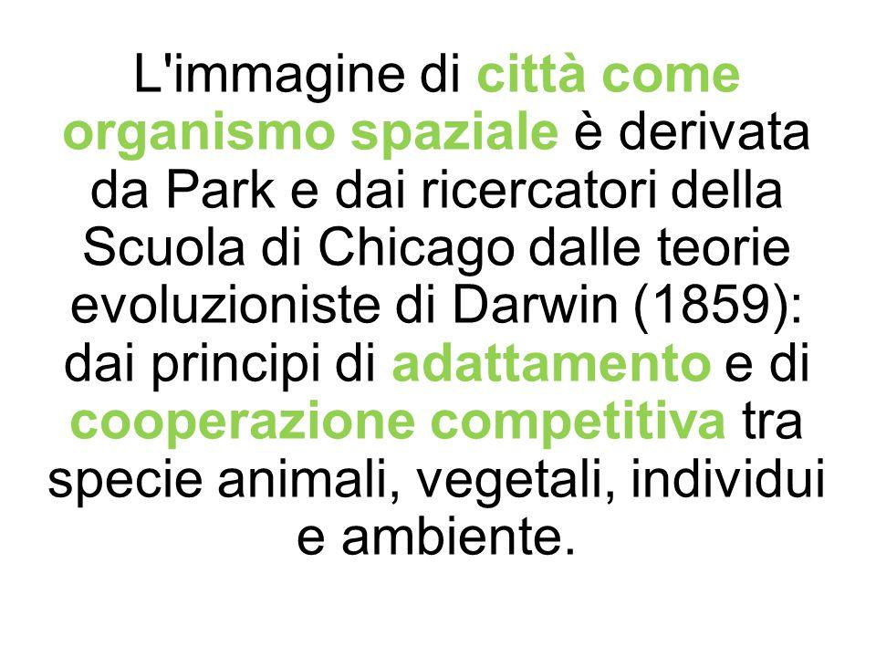 L immagine di città come organismo spaziale è derivata da Park e dai ricercatori della Scuola di Chicago dalle teorie evoluzioniste di Darwin (1859): dai principi di adattamento e di cooperazione competitiva tra specie animali, vegetali, individui e ambiente.