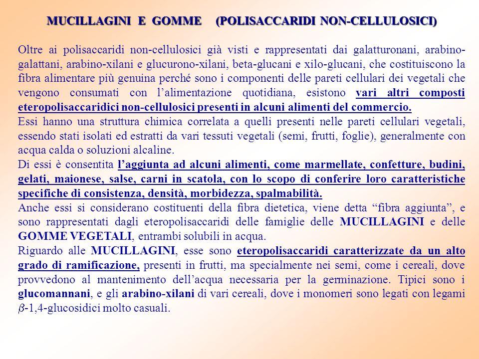 MUCILLAGINI E GOMME (POLISACCARIDI NON-CELLULOSICI)