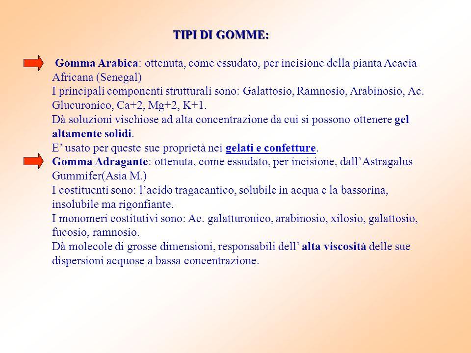 TIPI DI GOMME: Gomma Arabica: ottenuta, come essudato, per incisione della pianta Acacia Africana (Senegal)