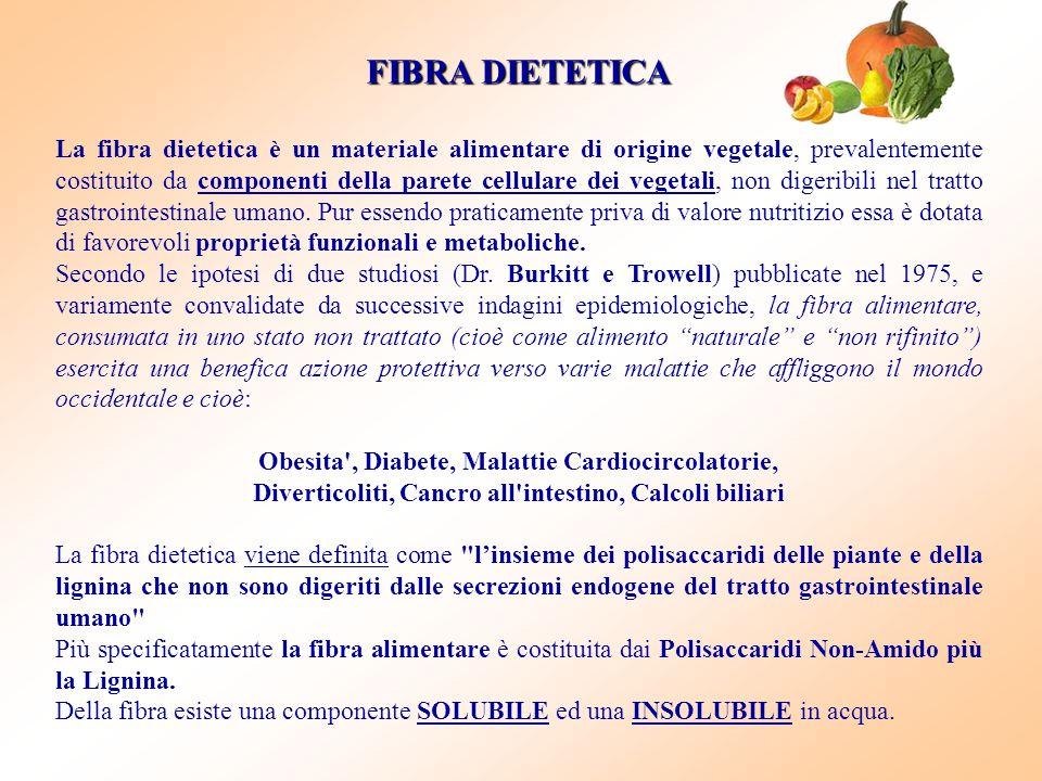FIBRA DIETETICA