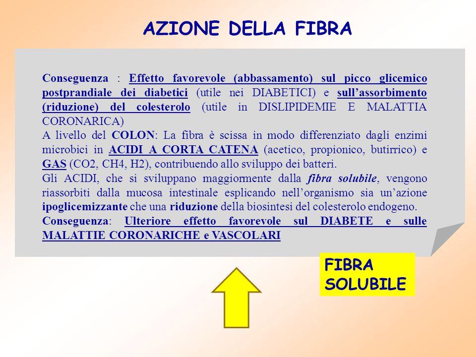 AZIONE DELLA FIBRA FIBRA SOLUBILE