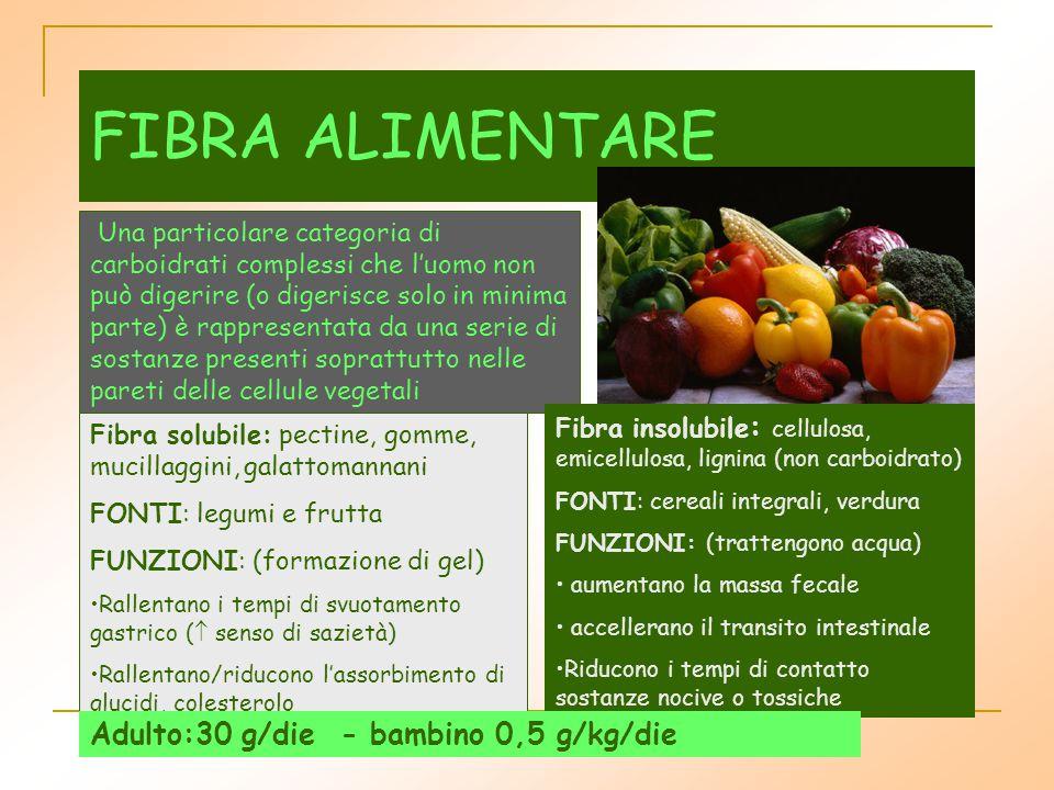 FIBRA ALIMENTARE Adulto:30 g/die - bambino 0,5 g/kg/die