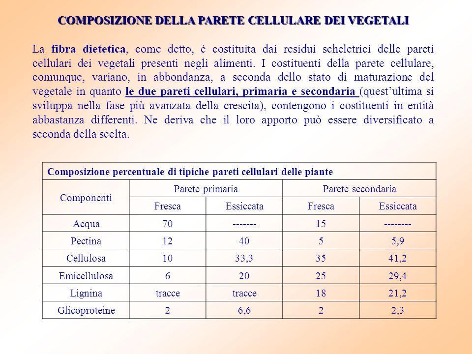 COMPOSIZIONE DELLA PARETE CELLULARE DEI VEGETALI