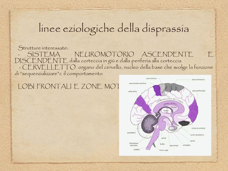 linee eziologiche della disprassia