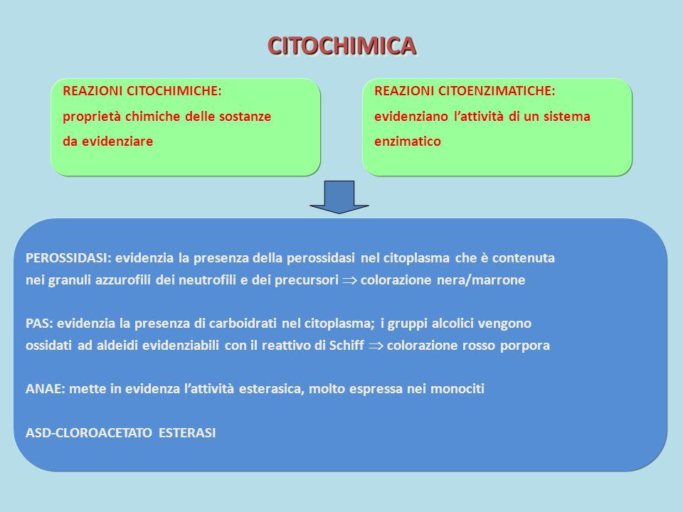 CITOCHIMICA REAZIONI CITOCHIMICHE: proprietà chimiche delle sostanze