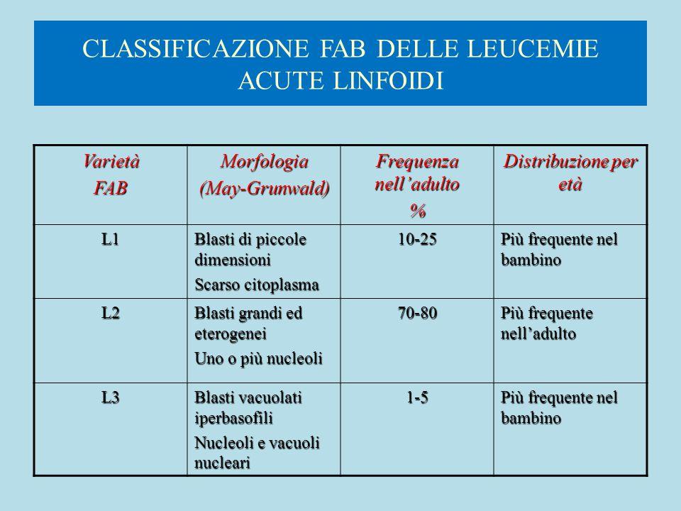 CLASSIFICAZIONE FAB DELLE LEUCEMIE ACUTE LINFOIDI