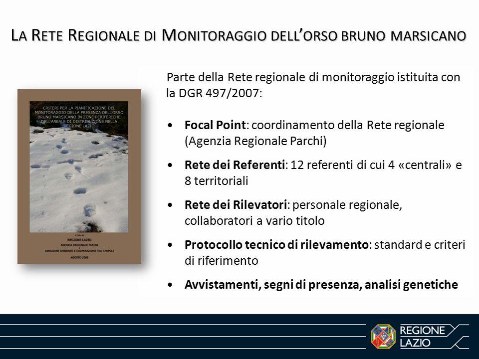 La Rete Regionale di Monitoraggio dell'orso bruno marsicano