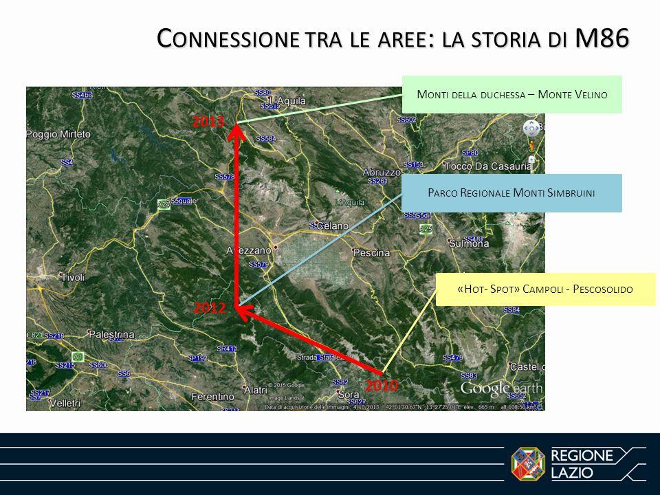 Connessione tra le aree: la storia di M86