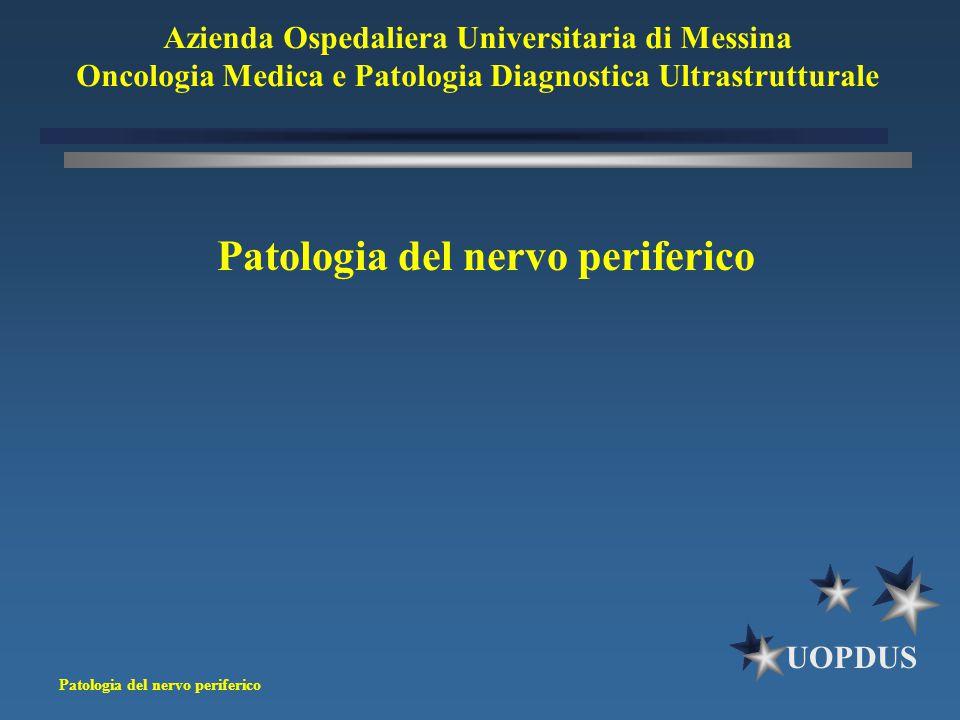 Patologia del nervo periferico
