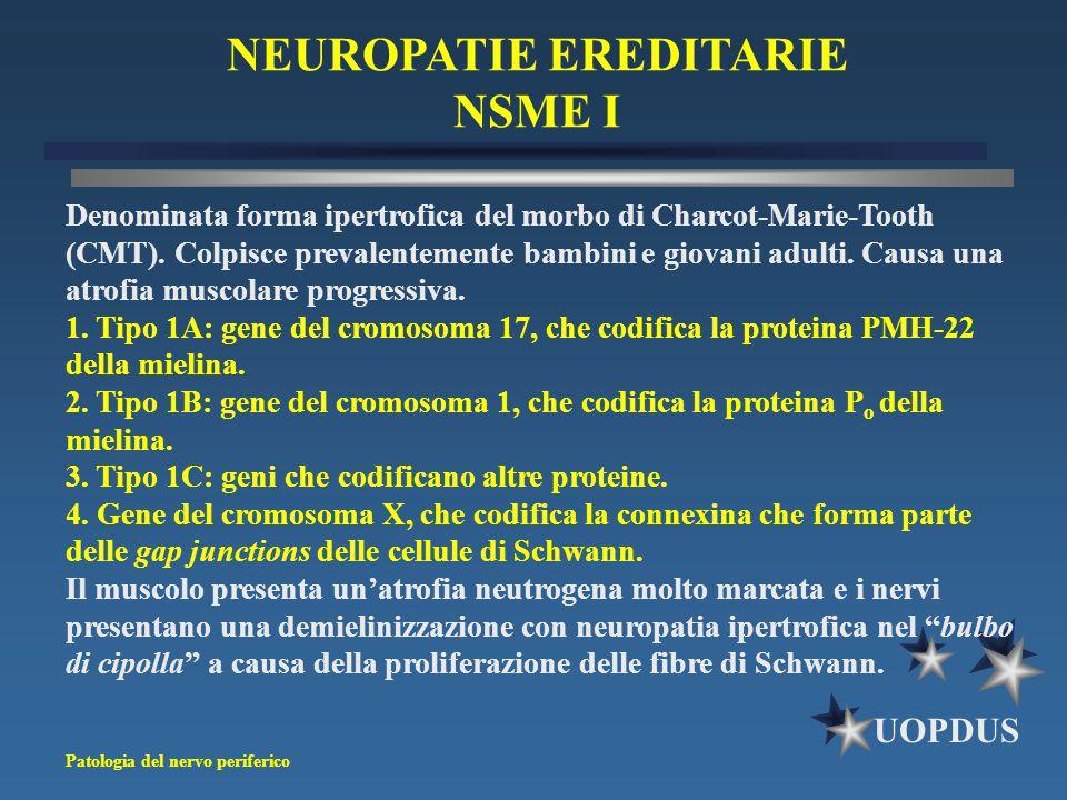 NEUROPATIE EREDITARIE