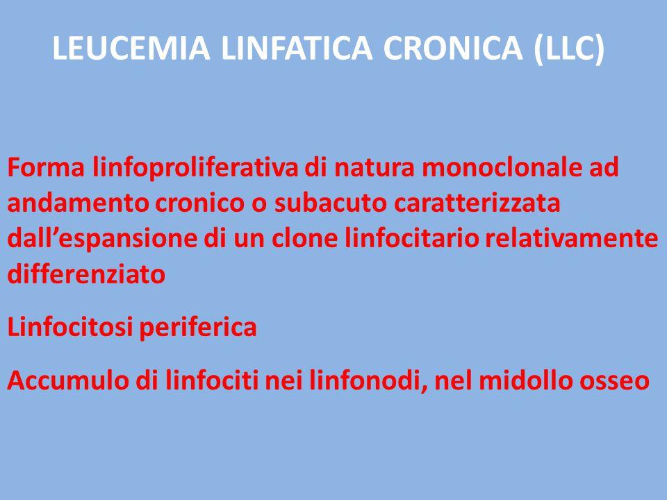 LEUCEMIA LINFATICA CRONICA (LLC)