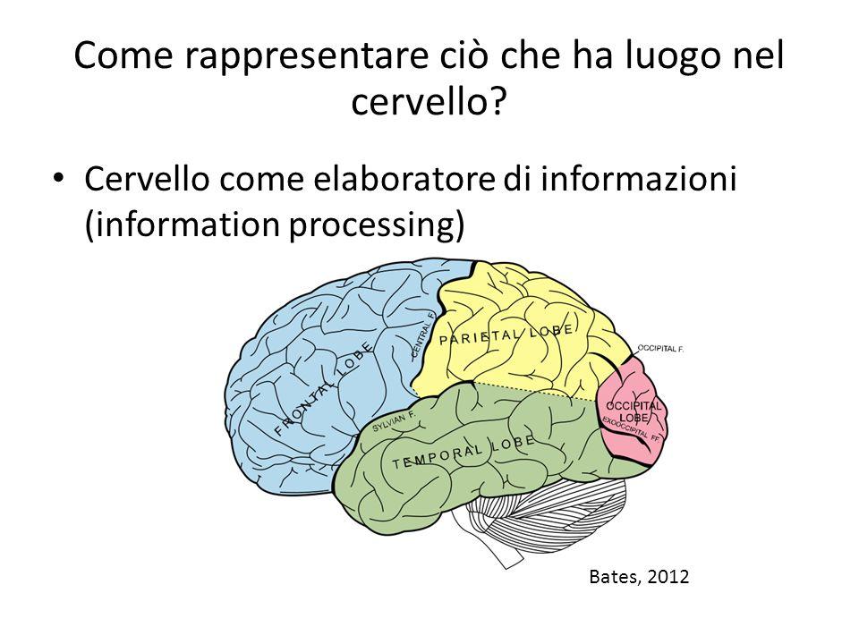 Come rappresentare ciò che ha luogo nel cervello