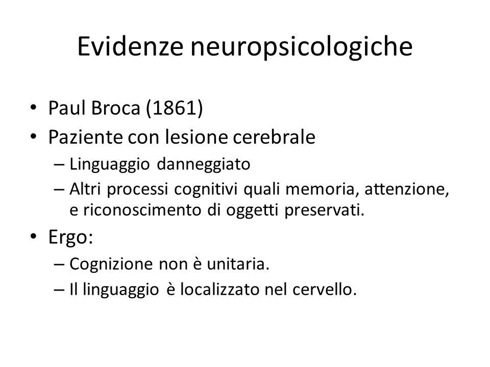 Evidenze neuropsicologiche