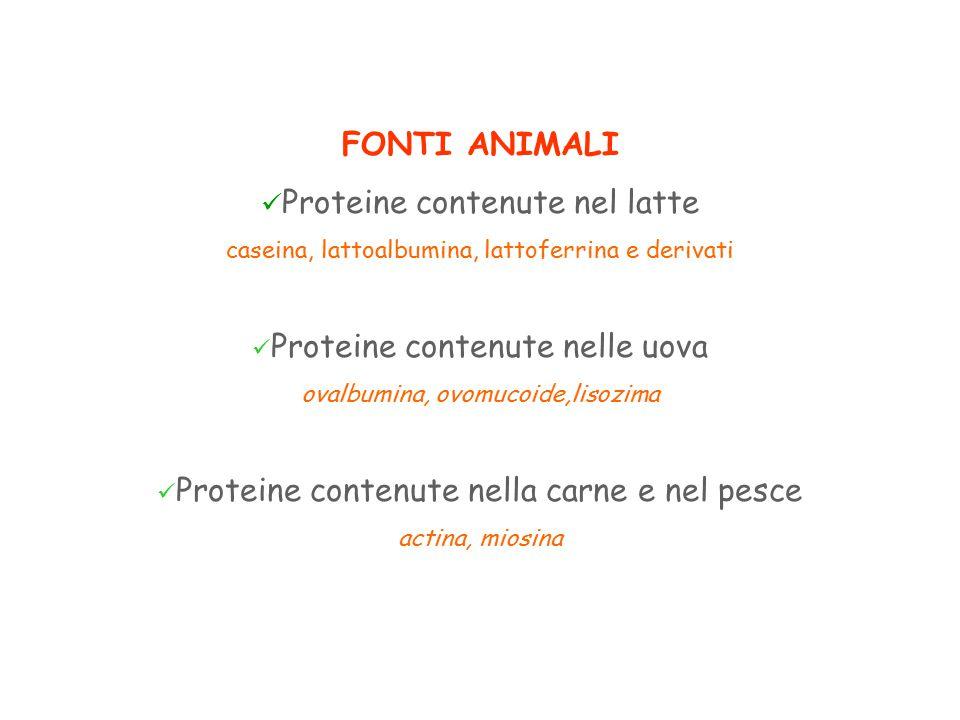 FONTI ANIMALI Proteine contenute nel latte