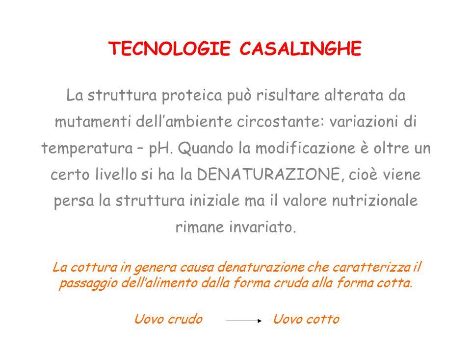 TECNOLOGIE CASALINGHE