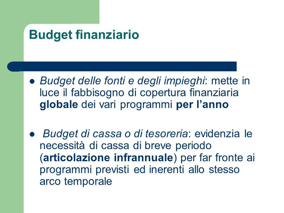 Budget finanziario Budget delle fonti e degli impieghi: mette in luce il fabbisogno di copertura finanziaria globale dei vari programmi per l'anno.