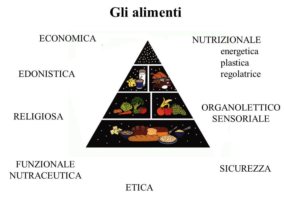 Gli alimenti ECONOMICA NUTRIZIONALE energetica plastica regolatrice