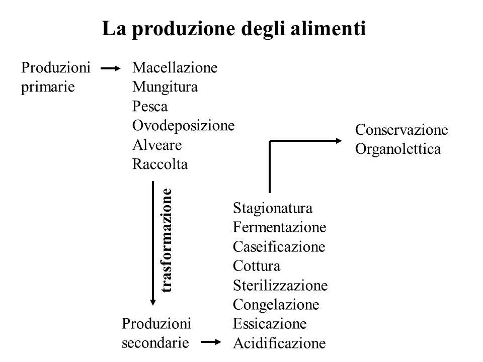 La produzione degli alimenti